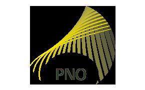 PNO CONSULTANTS
